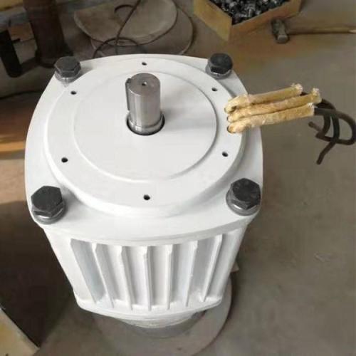 无刷直驱低速永磁发电机