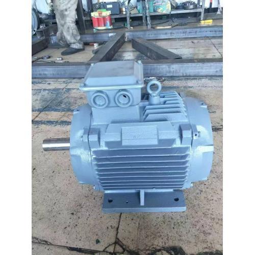 异步永磁发电机单项异步发电机