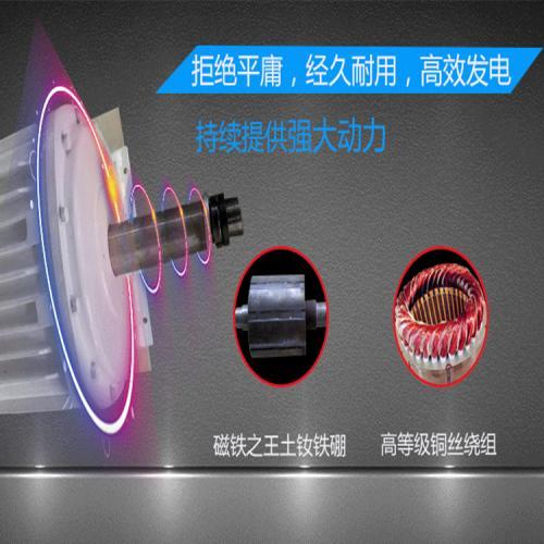 單項異形永磁發電機
