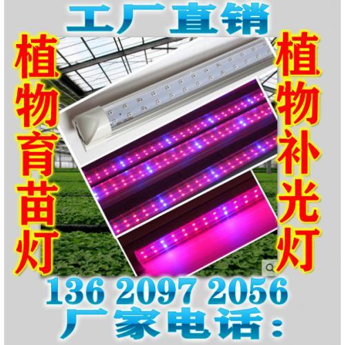 大功率300W植物灯