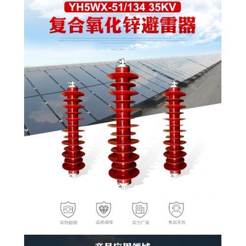 新型号风电专用避雷器