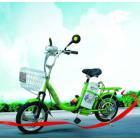 小輪車牌電動自行車