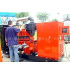 養殖場沼氣發電機組