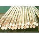 高耐磨进口磷青铜棒