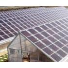 非晶硅太阳能