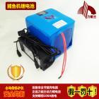 动力锰酸锂电池