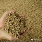 内蒙古极泰沙柳颗粒供应木屑颗粒