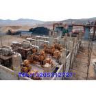 300系列煤制煤气发电机组