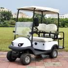 二座高爾夫電動老年人休閑代步車