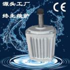 異形永磁風力發電機藍潤風力發電組